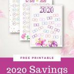 2020 budget savings challenge